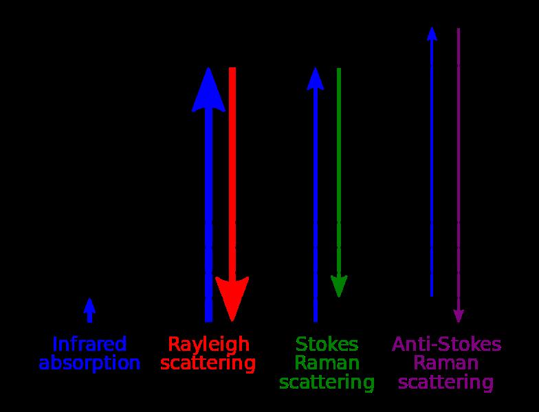 Key Difference - Electronic Rotational vs Vibrational Transition