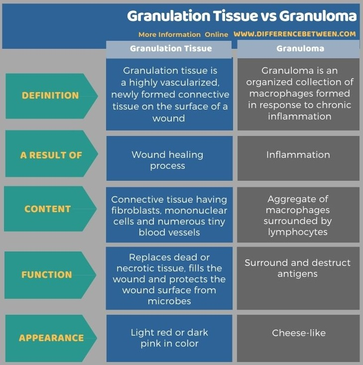 Difference Between Granulation Tissue and Granuloma in Tabular Form