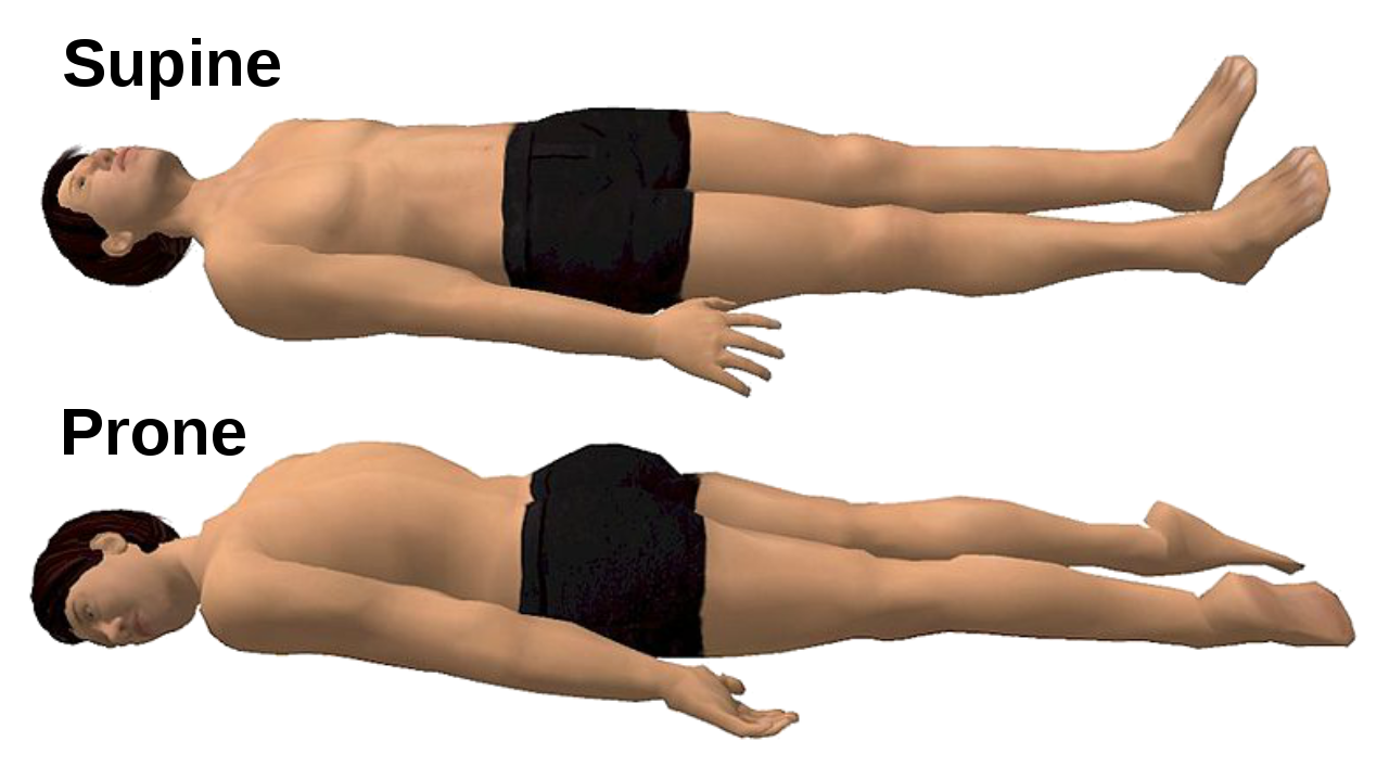 Difference Between Prone and Supine Position
