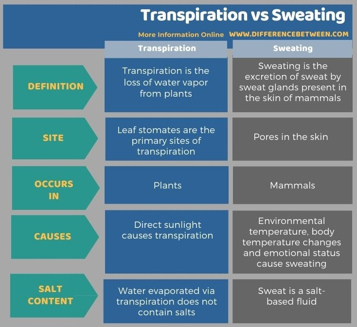Difference Between Transpiration and Sweating in Tabular Form