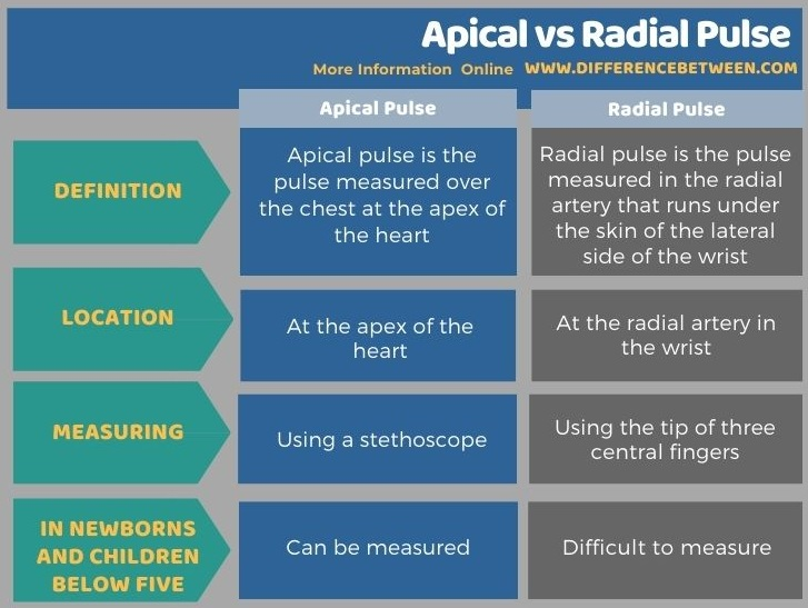 Difference Between Apical and Radial Pulse in Tabular Form
