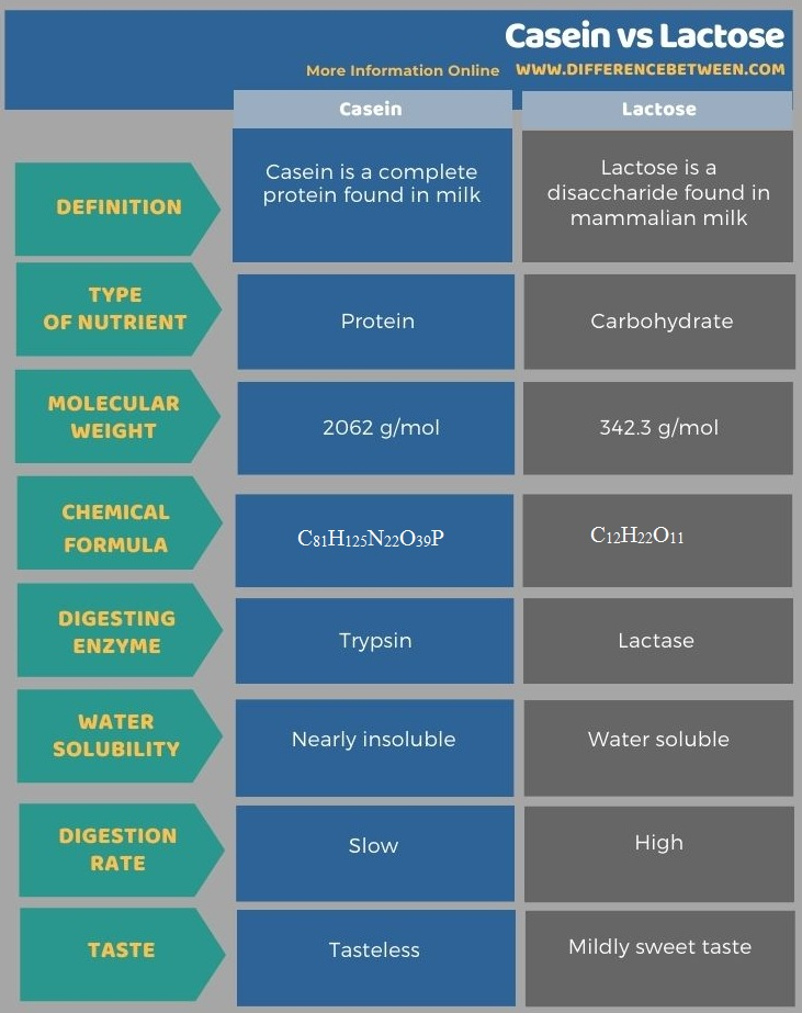 Difference Between Casein and Lactose in Tabular Form