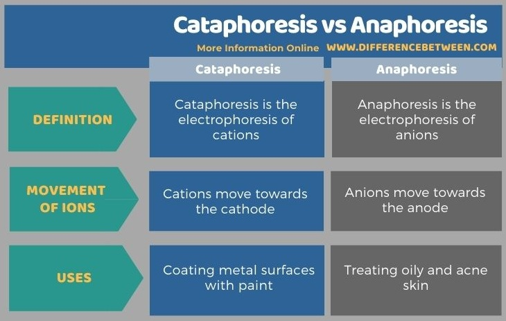 Difference Between Cataphoresis and Anaphoresis in Tabular Form