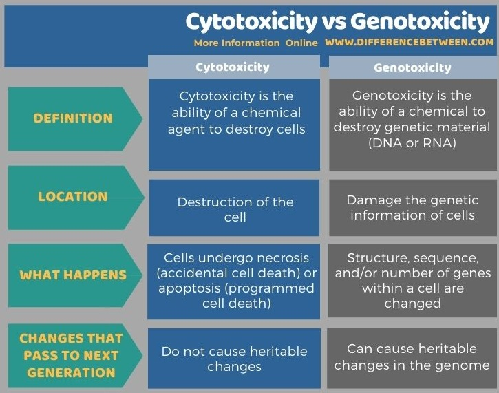 Difference Between Cytotoxicity and Genotoxicity in Tabular Form
