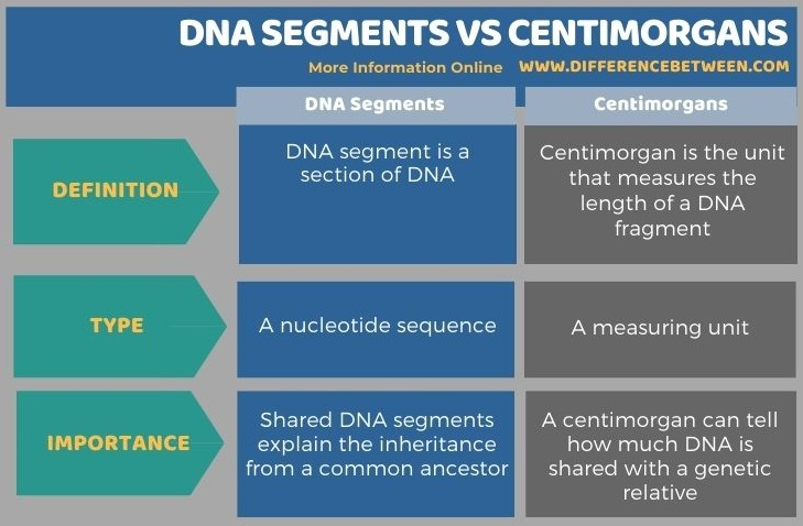Difference Between DNA Segments and Centimorgans in Tabular Form