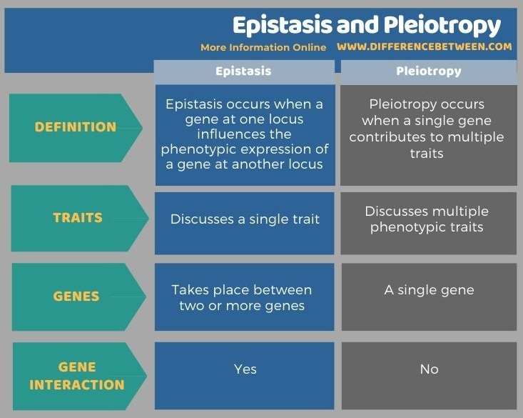 Difference Between Epistasis and Pleiotropy in Tabular Form