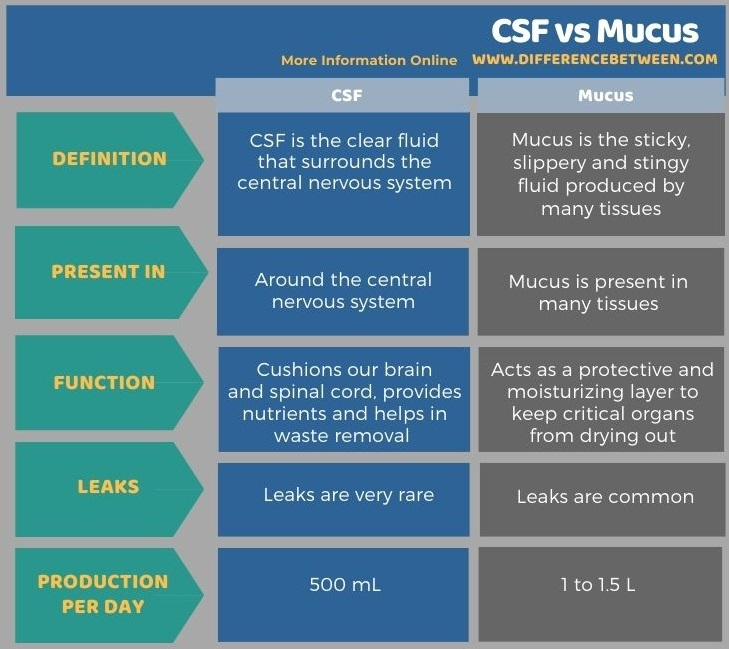 Difference Between CSF and Mucus in Tabular Form