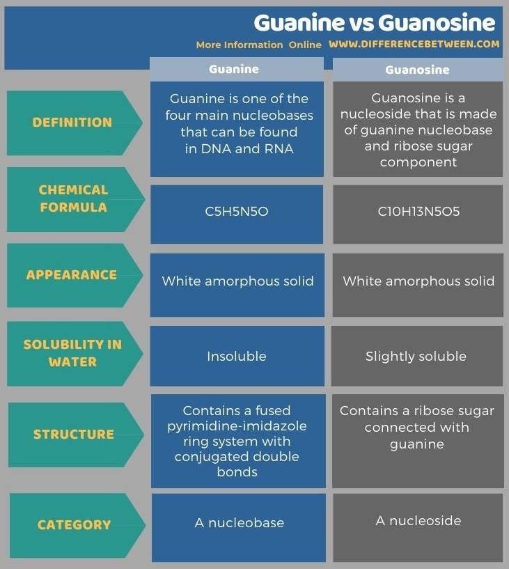 Difference Between Guanine and Guanosine in Tabular Form