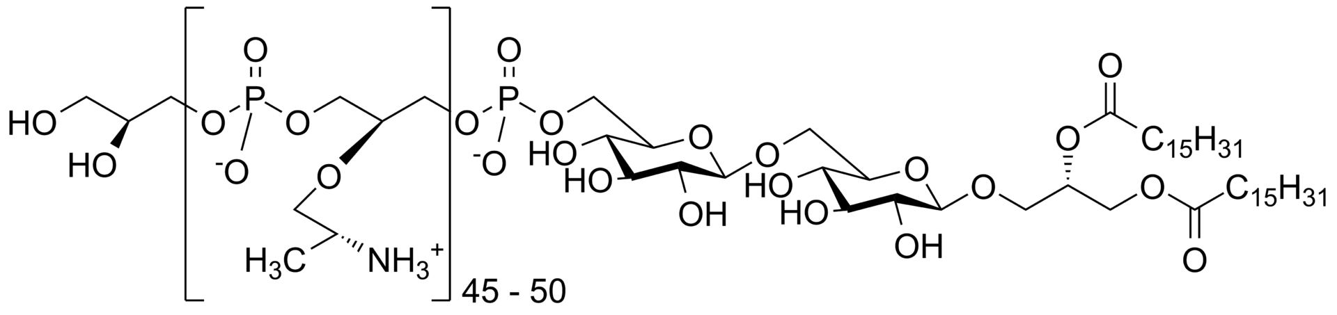 Key Difference - Wall Teichoic Acid vs Lipoteichoic Acid