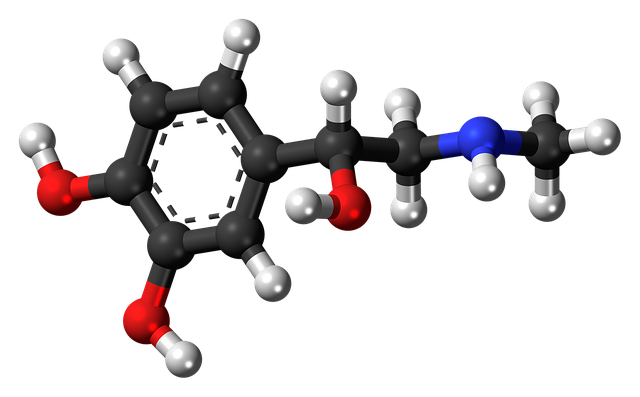 Key Difference - Acetylcholine vs Adrenaline