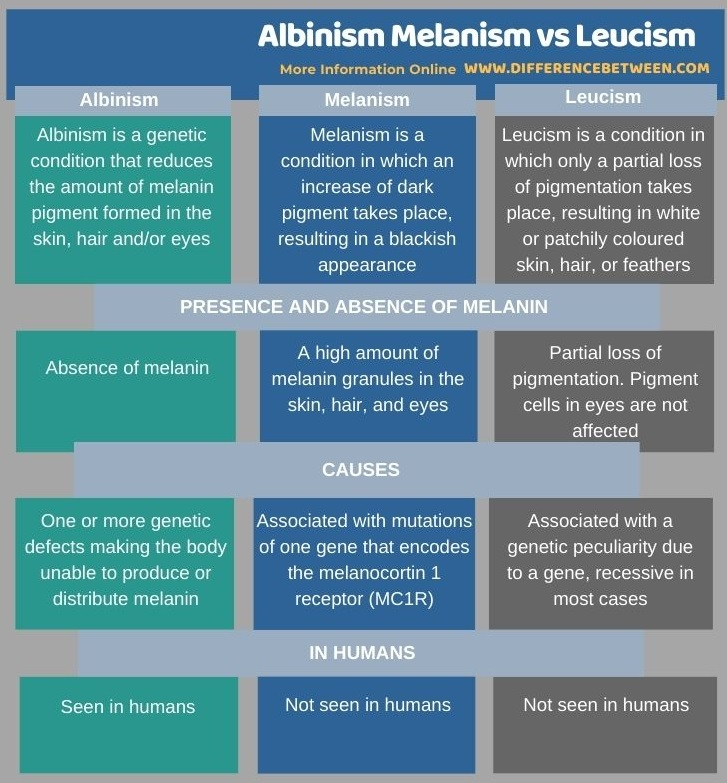 Difference Between Albinism Melanism and Leucism in Tabular Form