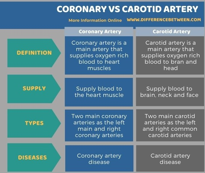 Difference Between Coronary and Carotid Artery in Tabular Form