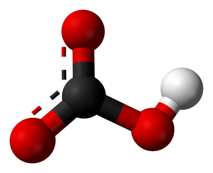 Key Difference - Metal Carbonate vs Metal Hydrogen Carbonate