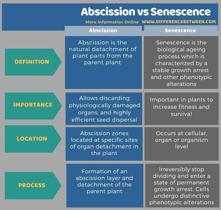 Difference Between Abscission and Senescence in Tabular Form