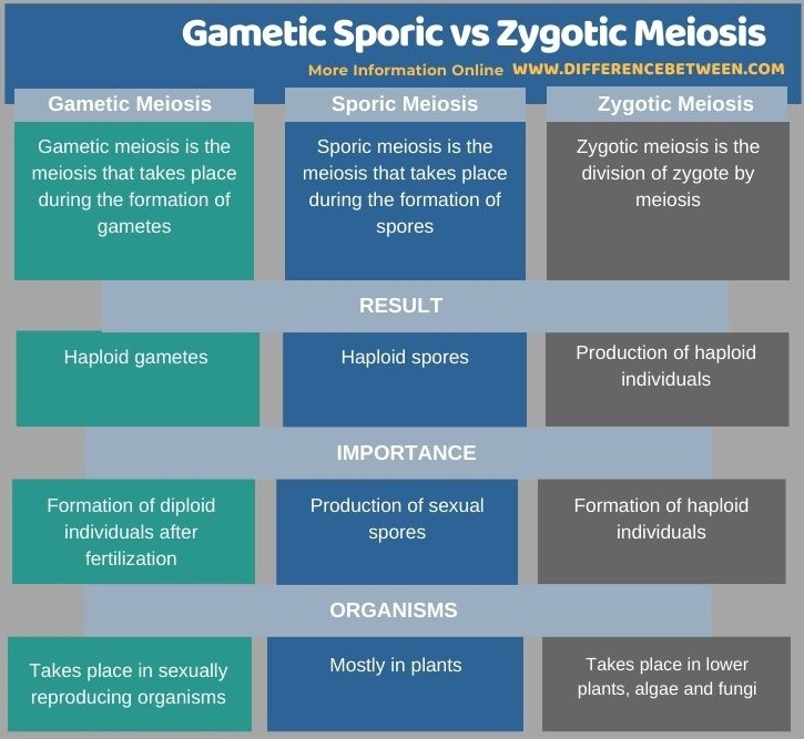 Difference Between Gametic Sporic and Zygotic Meiosis in Tabular Form