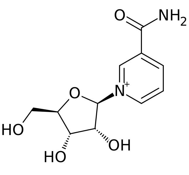 Difference Between Nicotinamide and Nicotinamide Riboside