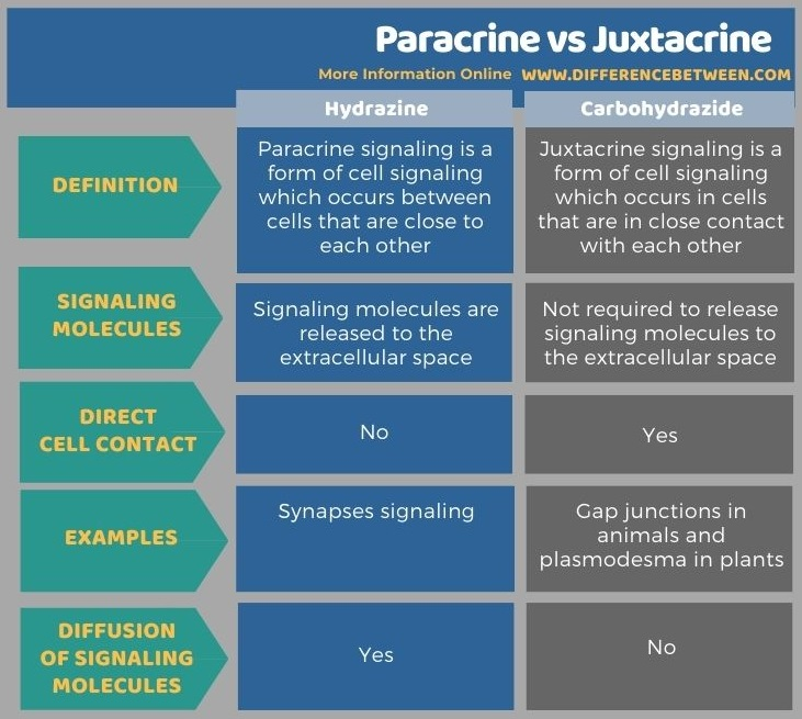Difference Between Paracrine and Juxtacrine in Tabular Form