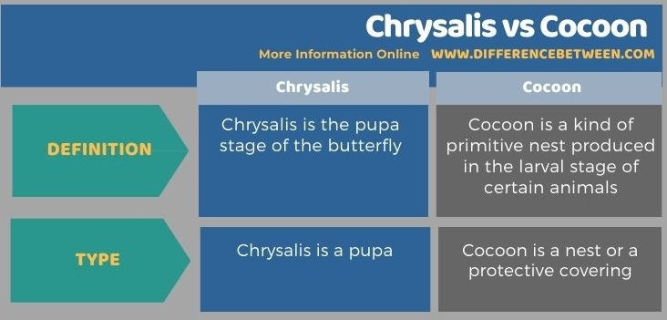 Difference Between Chrysalis and Cocoon in Tabular Form