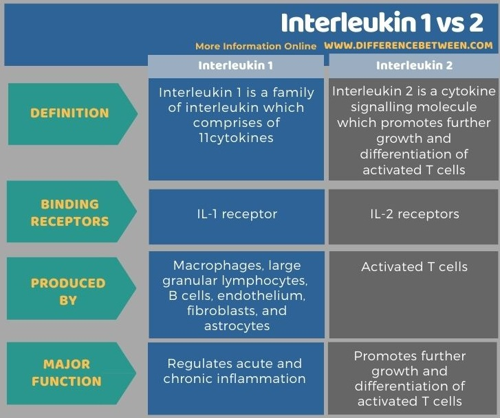 Difference Between Interleukin 1 and 2 in Tabular Form