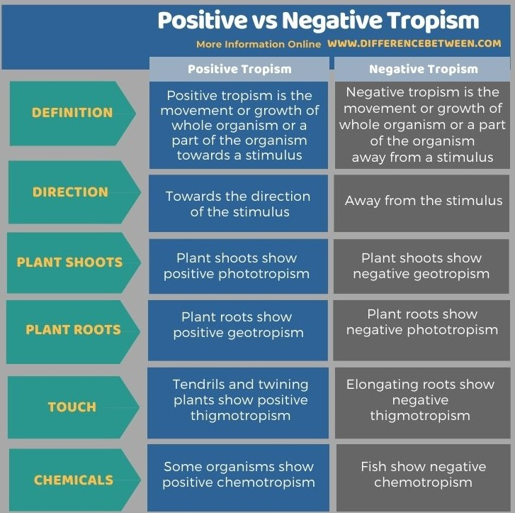 Difference Between Positive and Negative Tropism in Tabular Form
