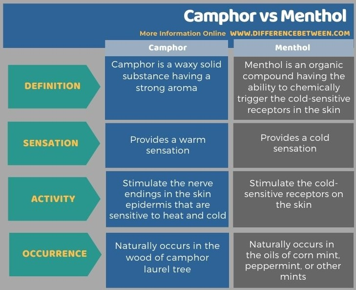 Difference Between Camphor and Menthol in Tabular Form