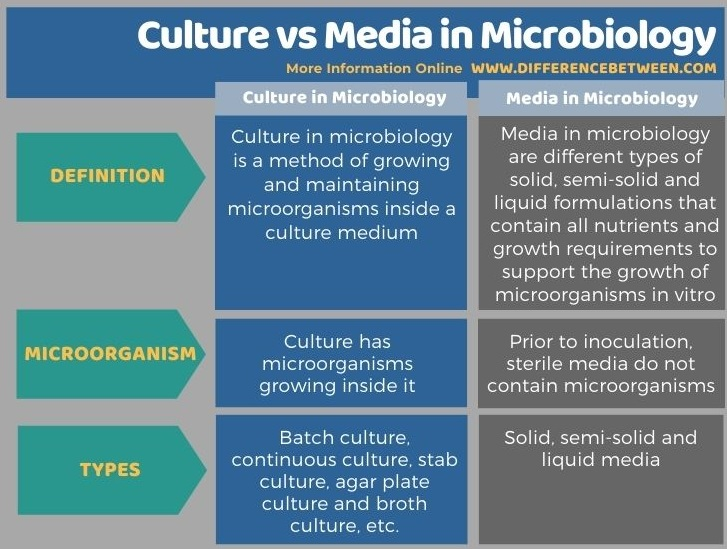 Difference Between Culture and Media in Microbiology in Tabular Form