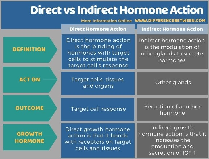 Difference Between Direct and Indirect Hormone Action in Tabular Form
