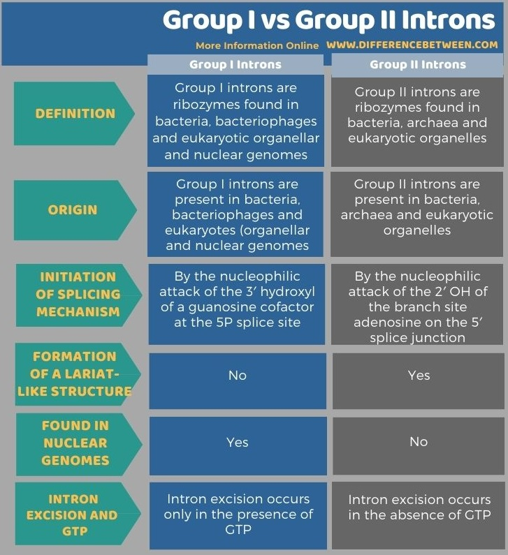 Difference Between Group I and Group II Introns in Tabular Form