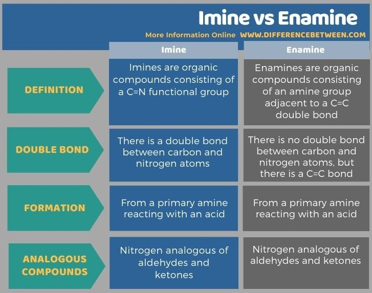 Difference Between Imine and Enamine in Tabular Form