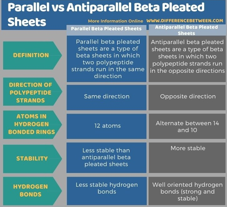 Difference Between Parallel and Antiparallel Beta Pleated Sheets in Tabular Form