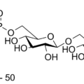 Difference Between Ribitol and Glycerol Teichoic Acid