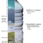 Difference Between TDS and Salinity