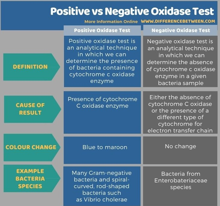 Difference Between Positive and Negative Oxidase Test in Tabular Form