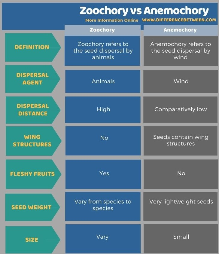 Difference Between Zoochory and Anemochory in Tabular Form