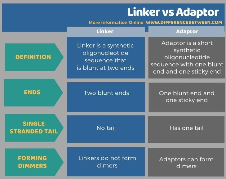 Difference Between Linker and Adaptor in Tabular Form
