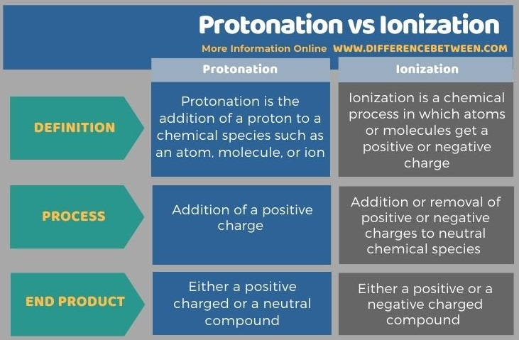 Difference Between Protonation and Ionization in Tabular Form