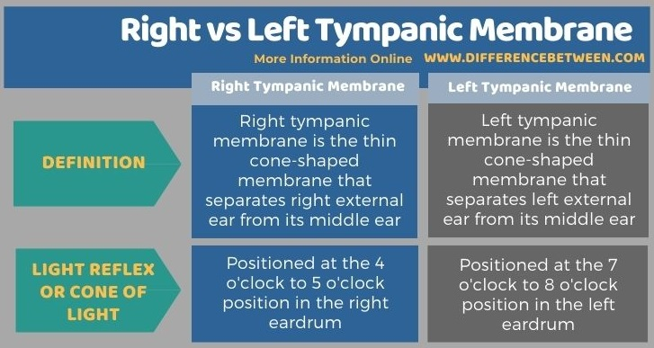 Difference Between Right and Left Tympanic Membrane - Tabular Form