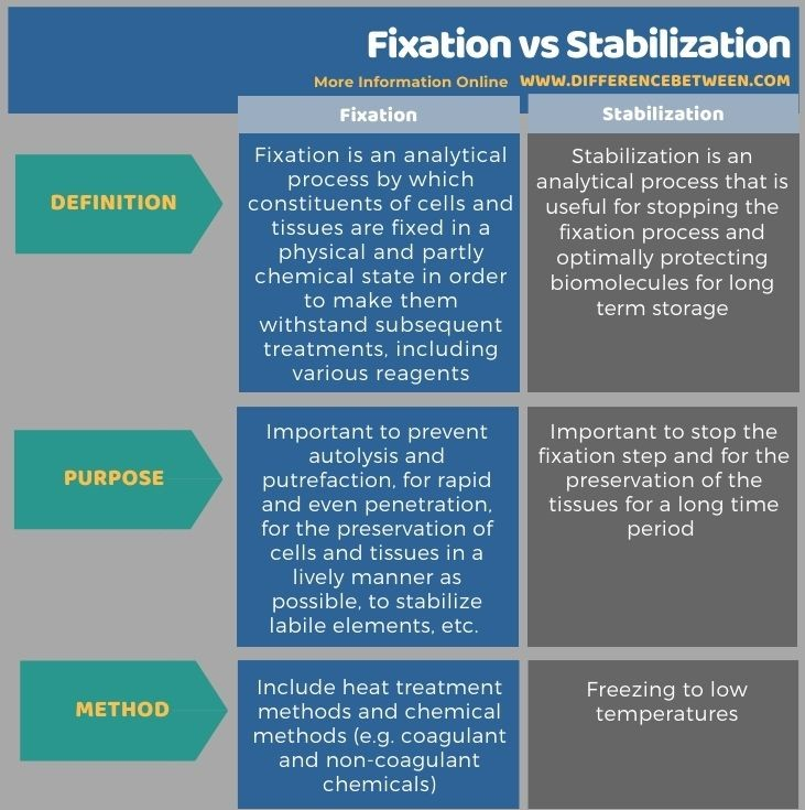 Difference Between Fixation and Stabilization in Tabular Form