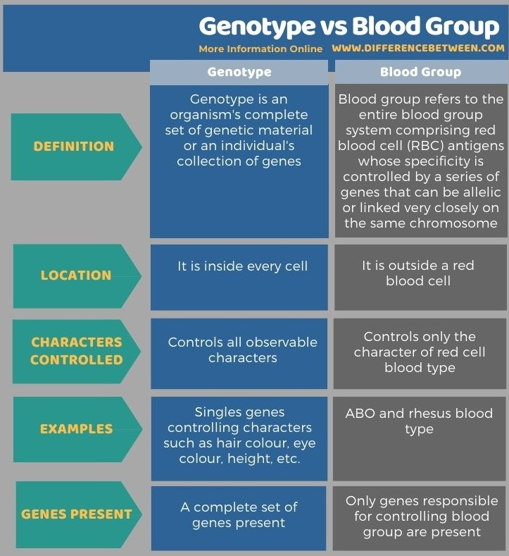 Difference Between Genotype and Blood Group in Tabular Form