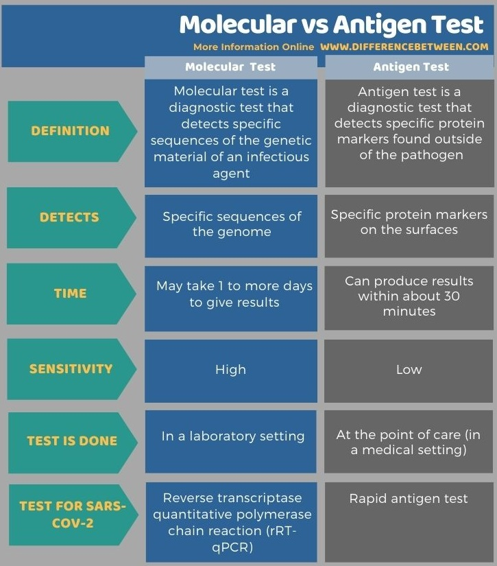 Difference Between Molecular and Antigen Test in Tabular Form