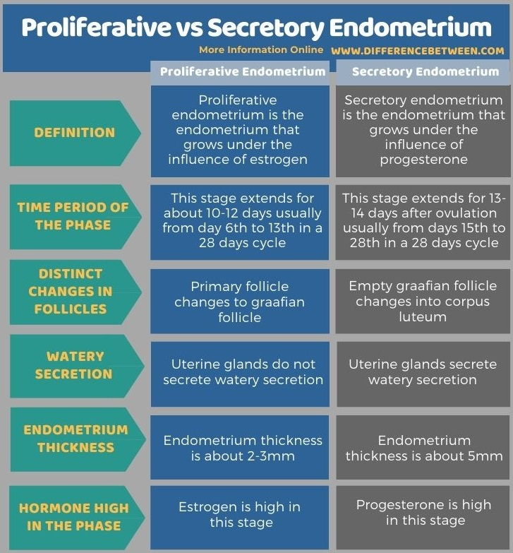 Difference Between Proliferative and Secretory Endometrium in Tabular Form