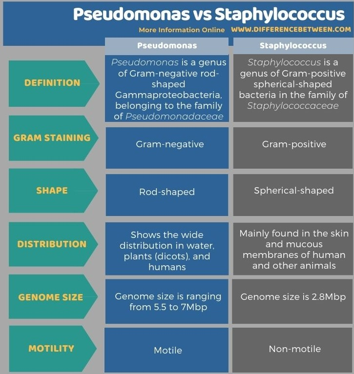 Difference Between Pseudomonas and Staphylococcus - Tabular Form