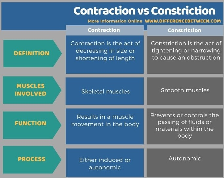 Difference Between Contraction and Constriction in Tabular Form