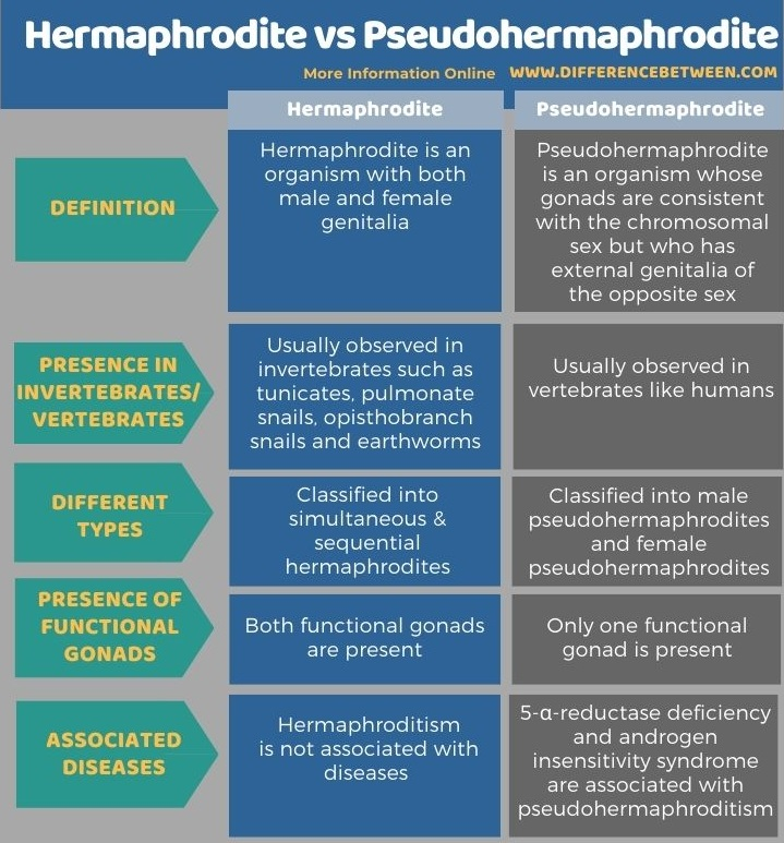 Difference Between Hermaphrodite and Pseudohermaphrodite in Tabular Form