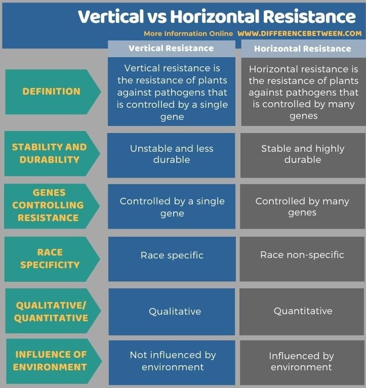 Difference Between Vertical and Horizontal Resistance in Tabular Form