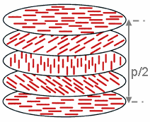 Schematic representation of cholesteric phase