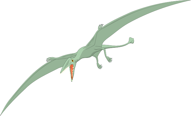 Illustration of Pterodactyl